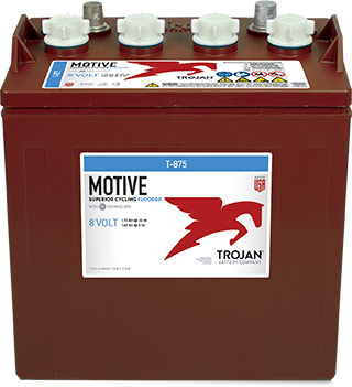 8V TROJAN  DEEP CYCLE BATTERY (Georgia)